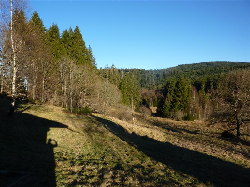 Agence immobili re g rardmer annonce maisons n 2368 for Agence immobiliere gerardmer